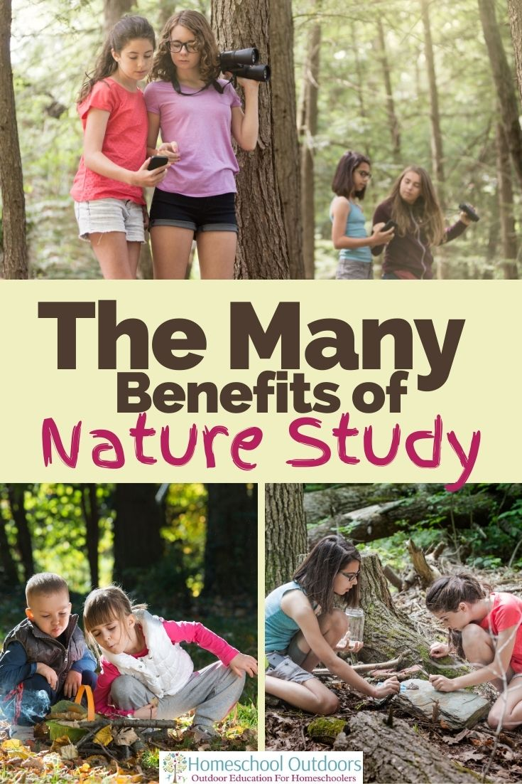 nature study benefits